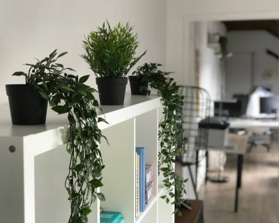 Office for rent PARIS 75011 - Le Cozy de Bastille - Green plant
